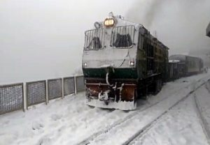 Season's heaviest snowfall turns Shimla into white paradise