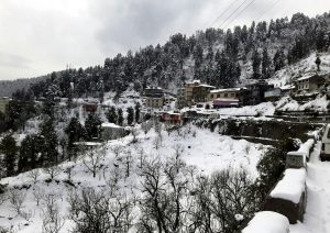 Himachal Pradesh: View of the thick blanket of white snow covered the area after a snowfall