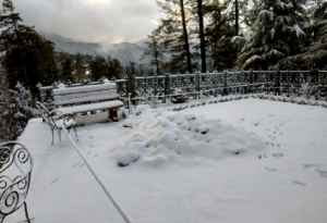 IN PICs: Fresh snowfall in Kinnaur district of Himachal