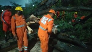 Cyclone Amphan leaves behind trail of destruction, now focus on bringing life to normalcy