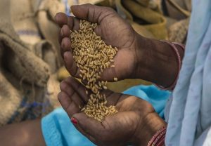 Cabinet approves AtmaNirbhar Bharat package for allocation of foodgrains to migrant workers
