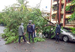 Cyclone leaves trees uprooted, vehicles damaged in Mumbai (PICs)