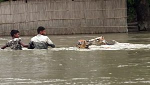 Over one million people affected in Bihar floods, 7 killed