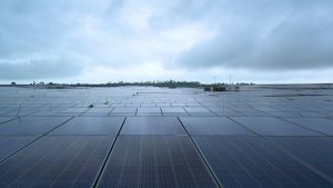 Glimpses from the solar power project that was inaugurated in Rewa, MP | See Pics