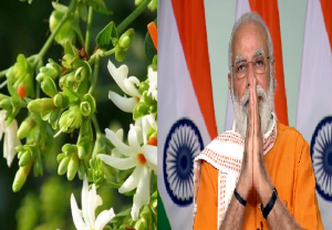 PM Modi to plant Parijaat tree on Ram temple premises