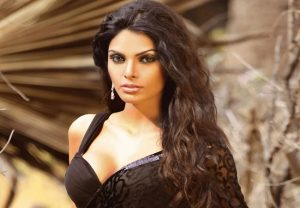 Saw 'Cricketers, Bollywood superstar's wives taking snorting cocaine', reveals Sherlyn Chopra