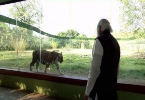 PM Modi inaugurates Jungle Safari in Gujarat's Kevadia | See Pics
