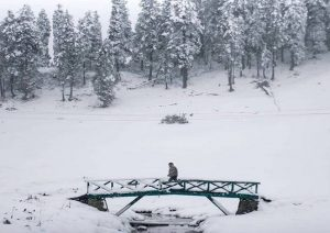 Heavy snowfall in Kashmir & Ladakh, rains lash Jammu and Delhi