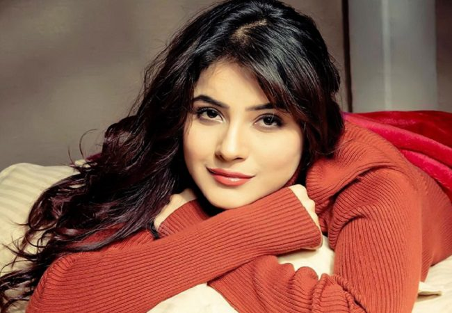 Shehnaaz Gill: From favorite food to favourite Personality; here is all you need know about Sana