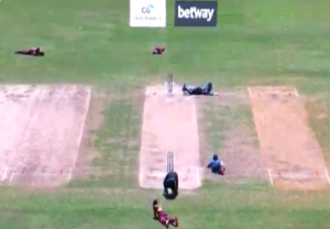West Indies Vs Sri Lanka: Bee attack halts ODI match, cricketers lie down on ground, VIDEO amuses fans