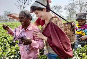 WATCH: In Assam, Priyanka Gandhi spends time with tea garden workers, seen plucking tea leaves