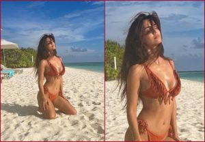 IT'S HOT! Disha Patani drops new picture from Maldives