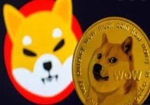 What will be Shiba Inu worth in 2022? Can SHIB really kill Dogecoin?